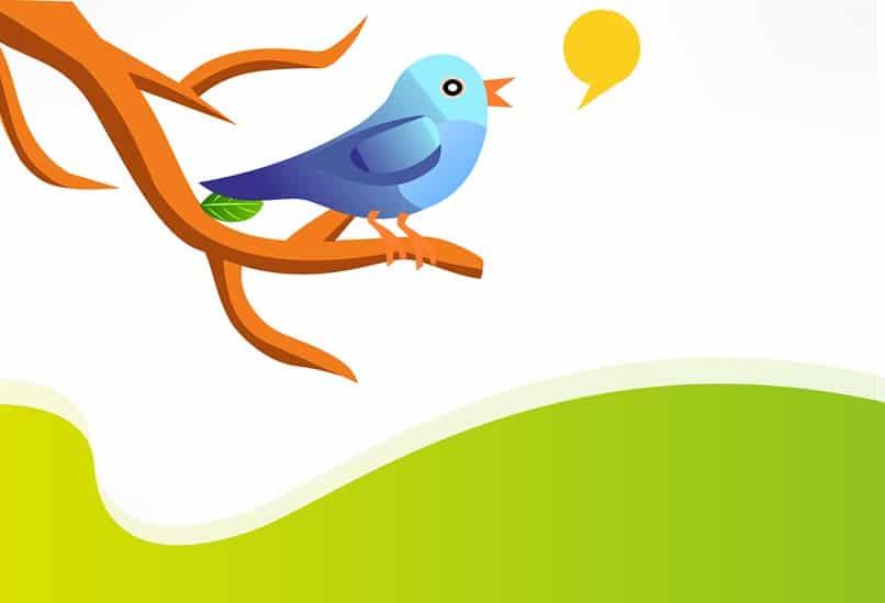 7 formas de variar o conteúdo no Twitter